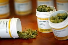 regunlación ley marihuana medicinal