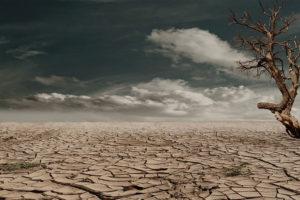 Cambio climático y salud - Eupharlaw Derecho de la Salud