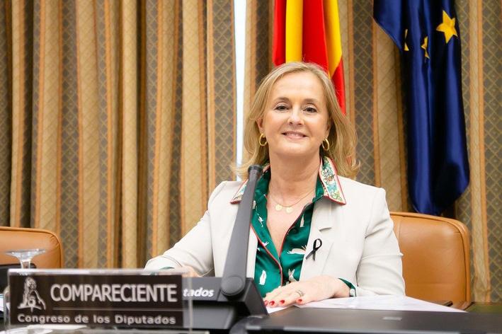 Fenin ha participado en la Comisión de Reconstrucción